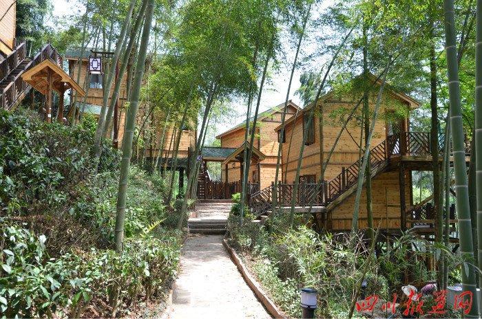 藏匿在竹林中的小木屋